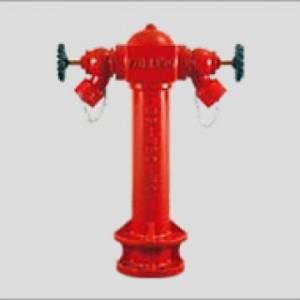 PH 1002 - 2 Way Fire Hydrant