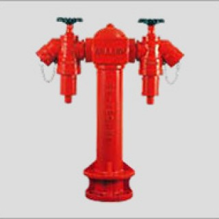 SPP9522BS - 2 Way Fire Hydrant
